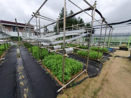 Rainout shelter for extreme drought manipulation